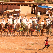 Berbner-festival-Fantasia-Morocco-High-Atlas-Mountains-