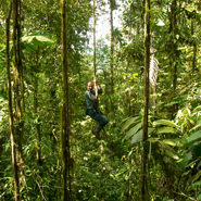 Cloud-Forest-Vine-Swing,-Ecuador
