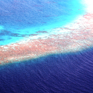 Reef-from-air-Ideas