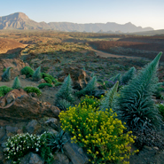 Tenerife-Mount-Teide-National-Park-Stargazing-5